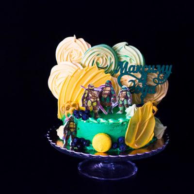 Narozeninový dětský dort «Ninja»