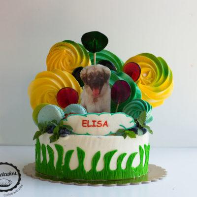 Dětský dort na narozeniny «Elisa»