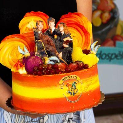 Dort na narozeniny «Hogwarts»