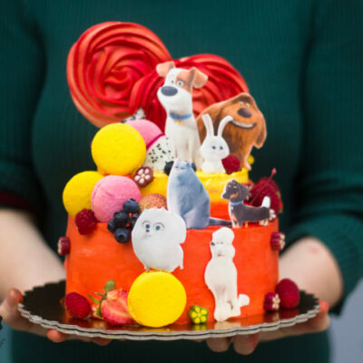 Dětský narozeninový dort «Mazlíčky»