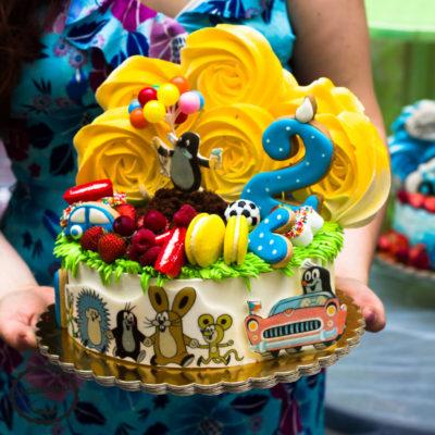Dětský dort na objednávku Krteček