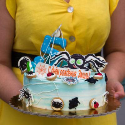 Dětský dort na narozeniny Pavouk