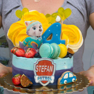 Dětský narozeninový dort Tlapková patrola 2 (1,5 kg 1200 kč)