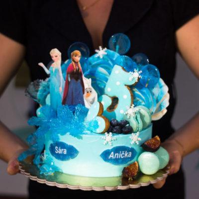 Dětský dort na objednávku Frozen 6