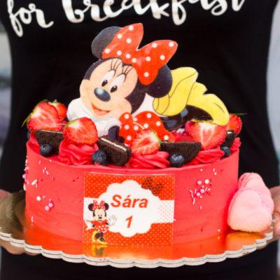 Dětský narozeninový dort Minnie 3 (2 kg, 1450 kč)