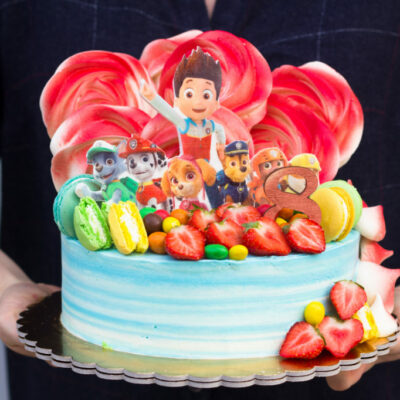 Dětský narozeninový dort Tlapková patrola 4 (2 kg 1450 kč)