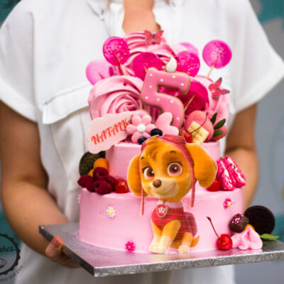 Dětský narozeninový dort Tlapková patrola 3 Skye (4 kg 2500 kč)