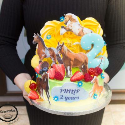 Dětský narozeninový dort Kůň 2