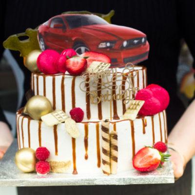 Narozeninový dort pro slečnu Mustang