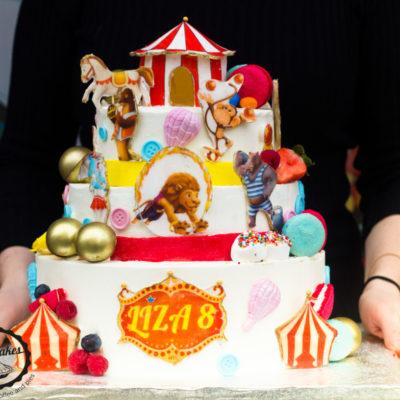 Dětský narozeninový dort Cirkus 2
