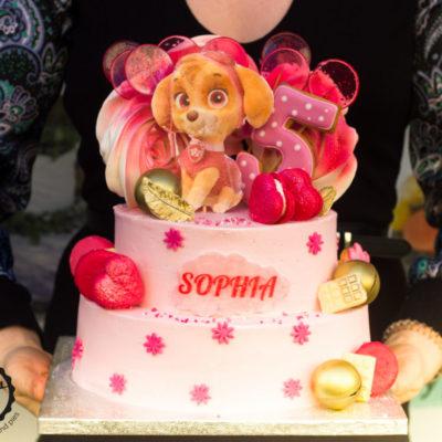 Dětský narozeninový dort Tlapková patrola 5 Skye (4 kg, 2500 kč)