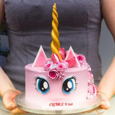Dětský narozeninový dort  Jednorožec 14