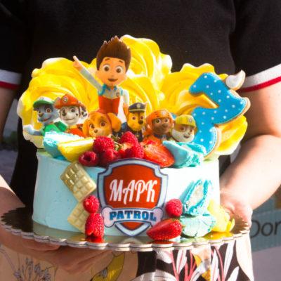 Dětský narozeninový dort Tlapková Patrola 9 (2 kg 1450 kč)
