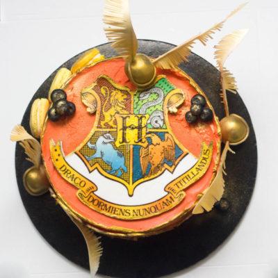 Dětský narozeninový dort na objednávku Harry Potter 2 (2 kg, 1450 kč)