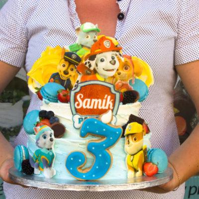 Dětský narozeninový dort Tlapková Patrola 13 (3,5 kg, 2200 kč)