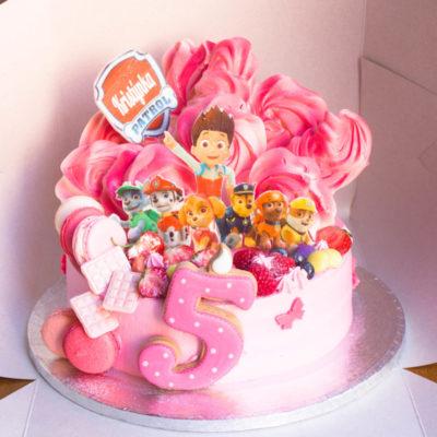 Dětský dort pro holku Tlapková Patrola 14 (2,5 kg, 1700 kč)