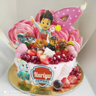 Dětský dort Tlapková patrola 17 (2 kg,1450 kč)